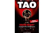 TAO – Drum Heat kommt nach Hamburg – Freikarten zu gewinnen